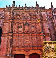 Salamanca university, frog on skull