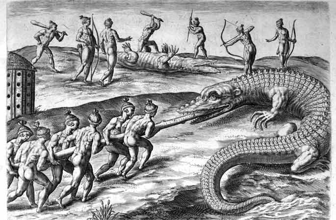 Timucua killing alligators 02