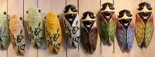 cicadas cigales provence