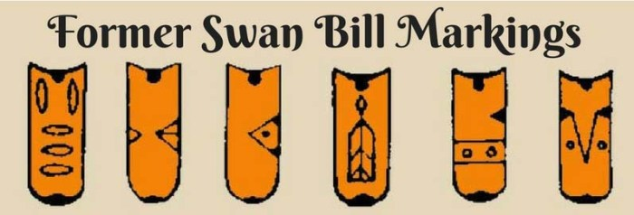 Former Swan Bill Markings