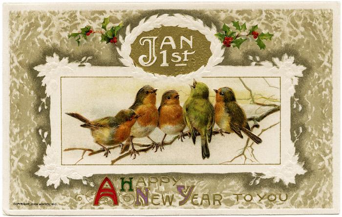 happy-new-year-bird-clipart-5