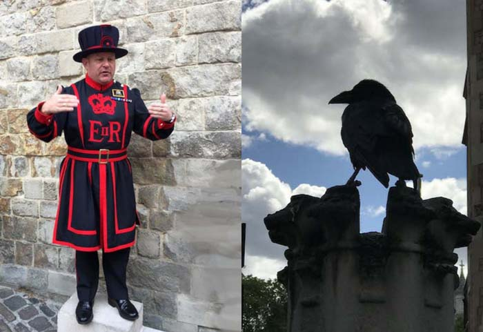 beefeater and raven